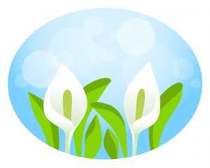 春の家族信託相談会のイメージ
